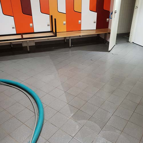 tile cleaning qpc